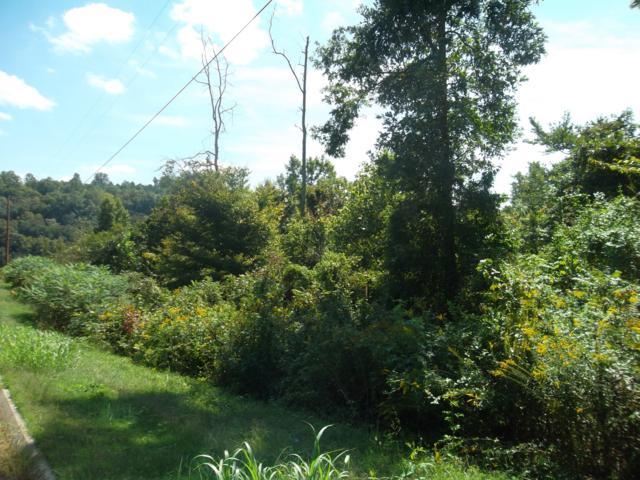 L-4 Wolf Peak Lane, Heiskell, TN 37754 (#976661) :: Shannon Foster Boline Group