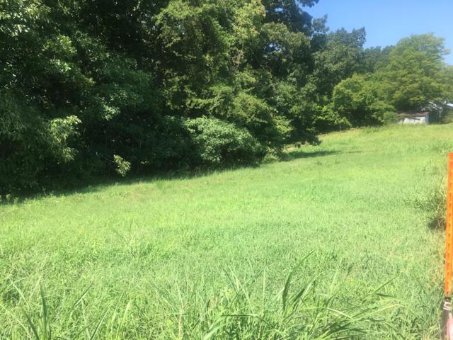 Sequoyah Rd, Andersonville, TN 37705 (#977001) :: Billy Houston Group