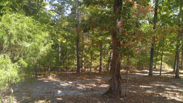 Lot 209 & Maple Drive, Spring City, TN 37381 (#982510) :: Billy Houston Group