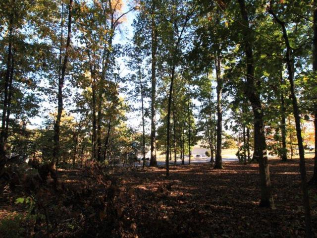 Lot 40 Country Way Rd, Vonore, TN 37885 (#984743) :: Billy Houston Group