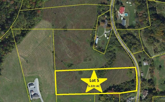 Liberality Rd, Madisonville, TN 37354 (#985193) :: Billy Houston Group