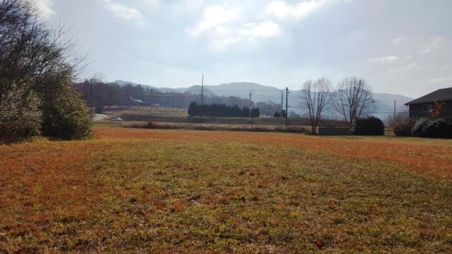 8017 E Lamar Alexander Pkwy, Townsend, TN 37882 (#985327) :: Venture Real Estate Services, Inc.