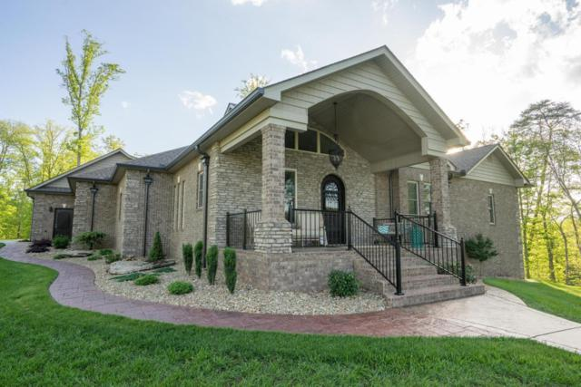 9025 Thunder Bay Way, Knoxville, TN 37938 (#985512) :: Billy Houston Group