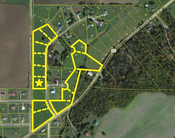 Meadow Brook Rd, Sweetwater, TN 37874 (#985665) :: Billy Houston Group