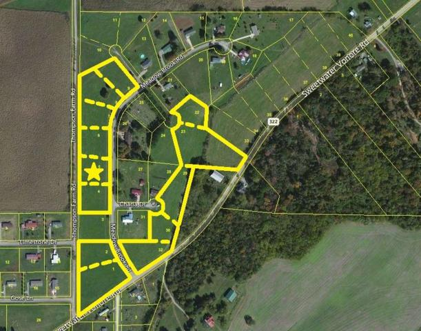 Meadow Brook Rd, Sweetwater, TN 37874 (#985666) :: Billy Houston Group