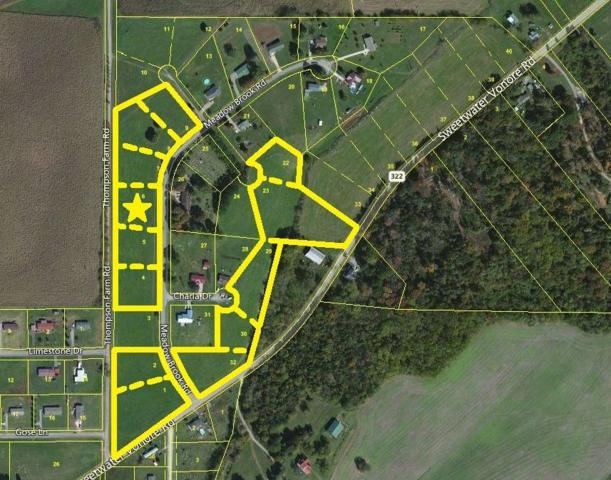 Meadow Brook Rd, Sweetwater, TN 37874 (#985668) :: Billy Houston Group