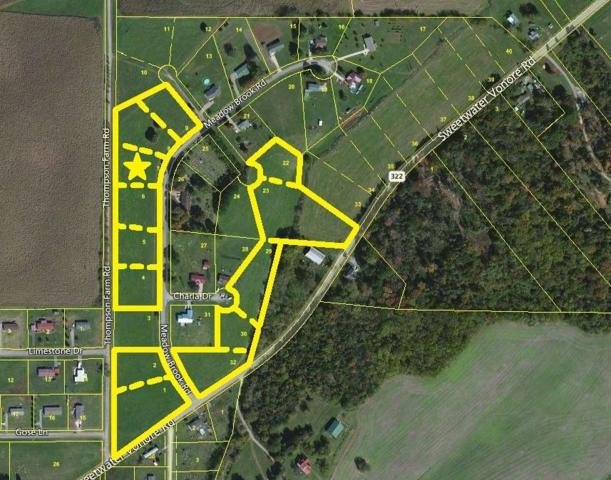 Meadow Brook Rd, Sweetwater, TN 37874 (#985670) :: Billy Houston Group