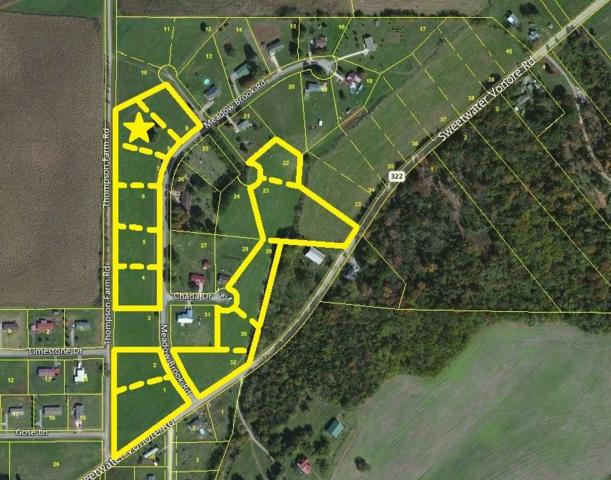 Meadow Brook Rd, Sweetwater, TN 37874 (#985671) :: Billy Houston Group