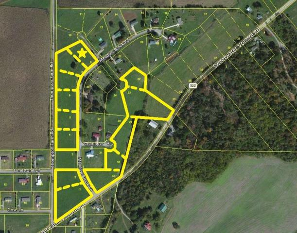 Meadow Brook Rd, Sweetwater, TN 37874 (#985672) :: Billy Houston Group