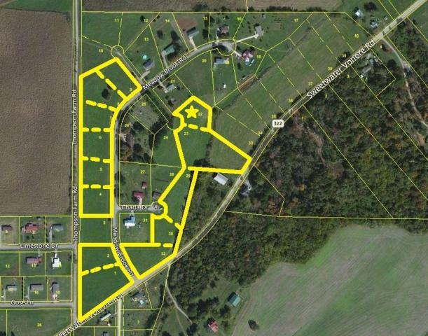 Meadow Brook Rd, Sweetwater, TN 37874 (#985673) :: Billy Houston Group