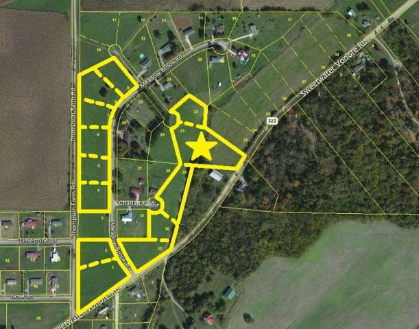 Meadow Brook Rd, Sweetwater, TN 37874 (#985675) :: Billy Houston Group