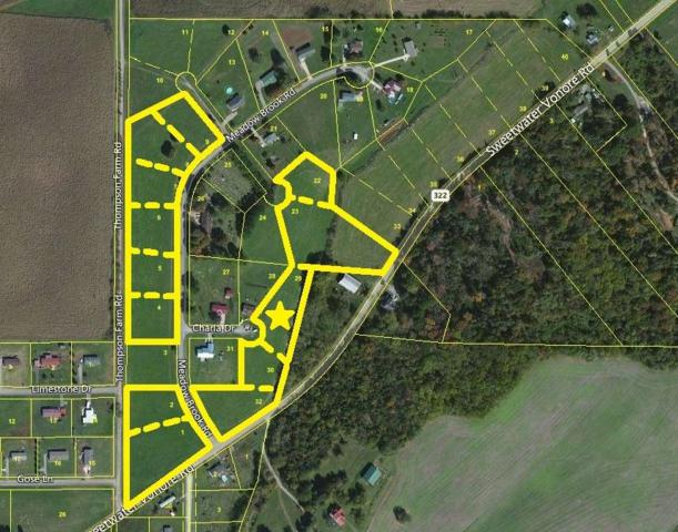 Charla Drive, Sweetwater, TN 37874 (#985677) :: Billy Houston Group