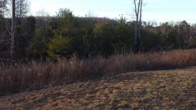 3805 Lt 6 Hillside Terrace Lane, Knoxville, TN 37924 (#987662) :: Shannon Foster Boline Group