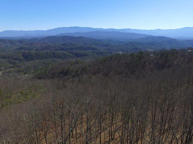Shell Mountain Rd, Sevierville, TN 37876 (#987932) :: Billy Houston Group