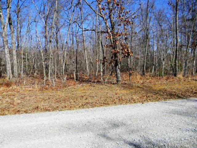 Deer Run, Spencer, TN 38585 (#989123) :: Tennessee Elite Realty