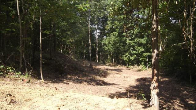 Highway 25/70, Dandridge, TN 37725 (#989916) :: Billy Houston Group