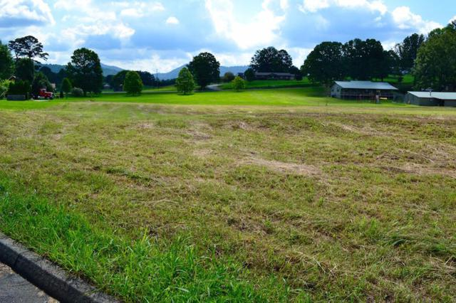 Bryce View Lane, Sevierville, TN 37876 (#993005) :: Realty Executives Associates Main Street