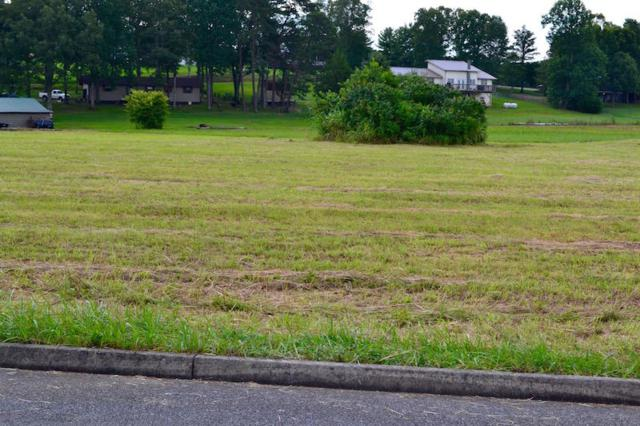 Bryce View Lane, Sevierville, TN 37876 (#993006) :: SMOKY's Real Estate LLC