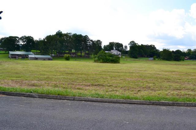 Bryce View Lane, Sevierville, TN 37876 (#993041) :: SMOKY's Real Estate LLC