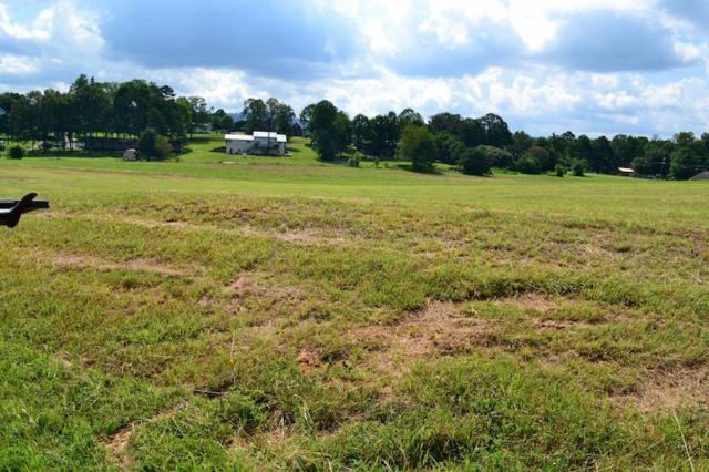 Bryce View Lane, Sevierville, TN 37876 (#993045) :: SMOKY's Real Estate LLC