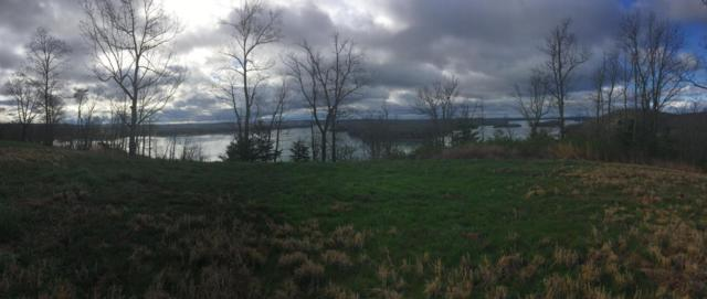 Lot 33 Hidden Forest Tr, Spring City, TN 37381 (#995112) :: Billy Houston Group