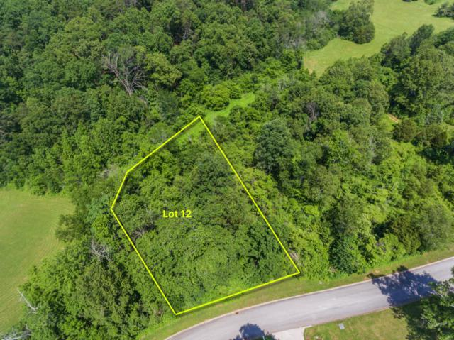 Lot 12 Autumn Woods Drive, Sweetwater, TN 37874 (#1006103) :: Billy Houston Group