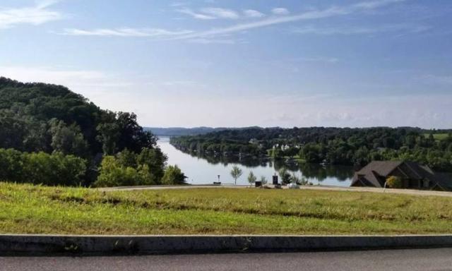 404 Quiet River Lane, Loudon, TN 37774 (#1009042) :: Billy Houston Group