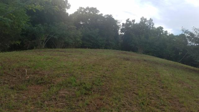 Hammer Rd, Knoxville, TN 37924 (#1011715) :: Billy Houston Group