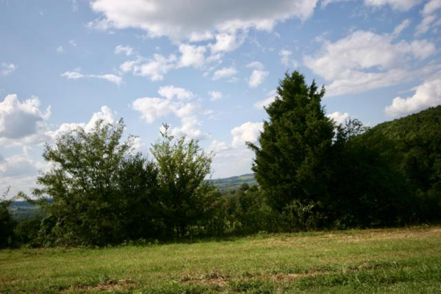 Lot # 28 High Ridge Rd, Sweetwater, TN 37874 (#1013345) :: Shannon Foster Boline Group