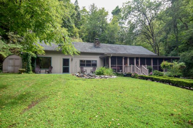3109&3113 N Clear Fork Rd, Sevierville, TN 37862 (#1014321) :: The Terrell Team