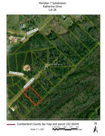 Lot # 28 Katherine Drive, Crossville, TN 38555 (#1018202) :: Cindy Kraus Group   Realty Executives Associates