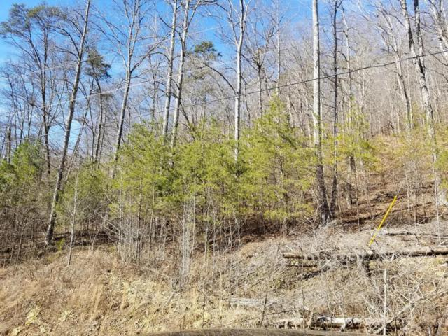 Lot 816 Wildcat Hollow Rd, New Tazewell, TN 37825 (#1019154) :: Billy Houston Group