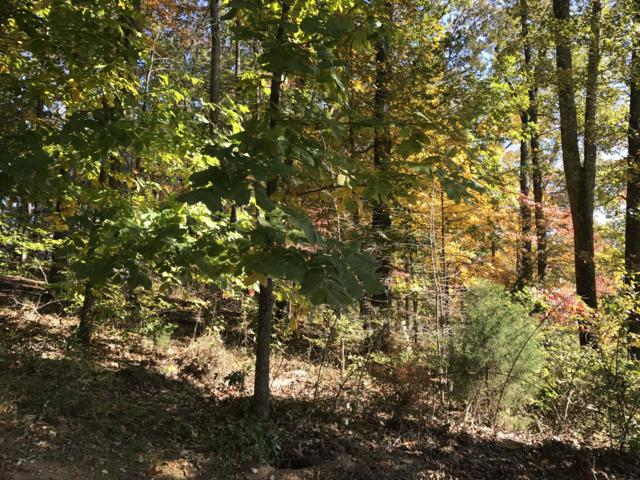 Nebo Mountain Rd, Walland, TN 37886 (#1019740) :: Billy Houston Group