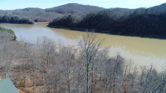 Lot 53 Mountain Shores Rd, New Tazewell, TN 37825 (#1019809) :: Billy Houston Group