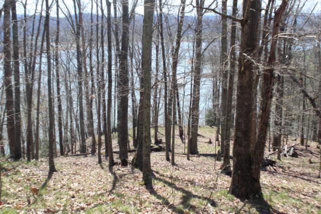 1012 Wilderness Drive, Mooresburg, TN 37811 (#1021237) :: Billy Houston Group