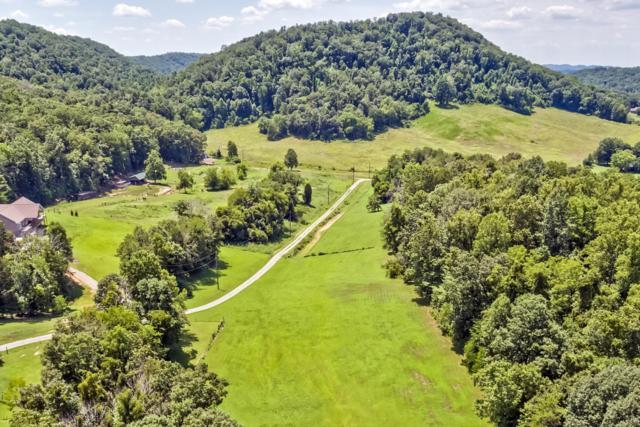 8456 Trundle Rd, Knoxville, TN 37920 (#1027779) :: Billy Houston Group