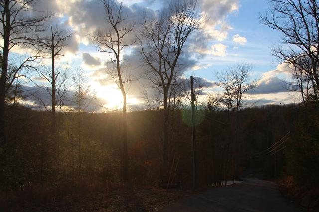Lot 7-R Woodcock Trail, Sevierville, TN 37876 (#1030587) :: Billy Houston Group