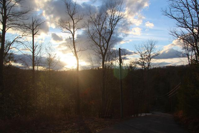 Lot 8-R Woodcock Trail, Sevierville, TN 37876 (#1030588) :: Billy Houston Group