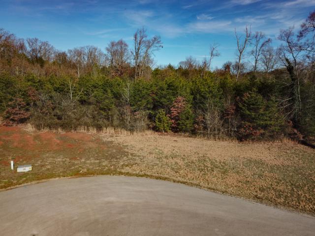 938 Shady Creek Rd, Maryville, TN 37801 (#1031065) :: Billy Houston Group