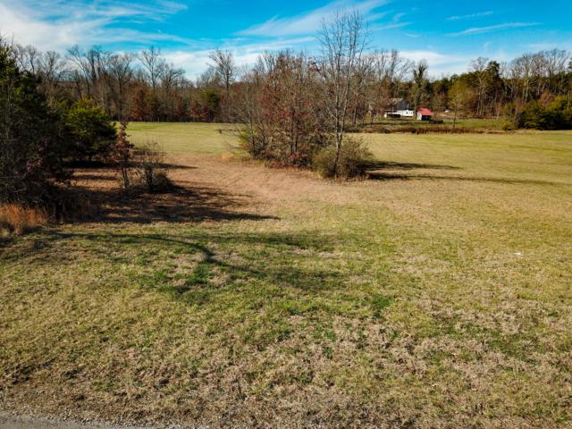 919 Shady Creek Rd, Maryville, TN 37801 (#1031068) :: Billy Houston Group