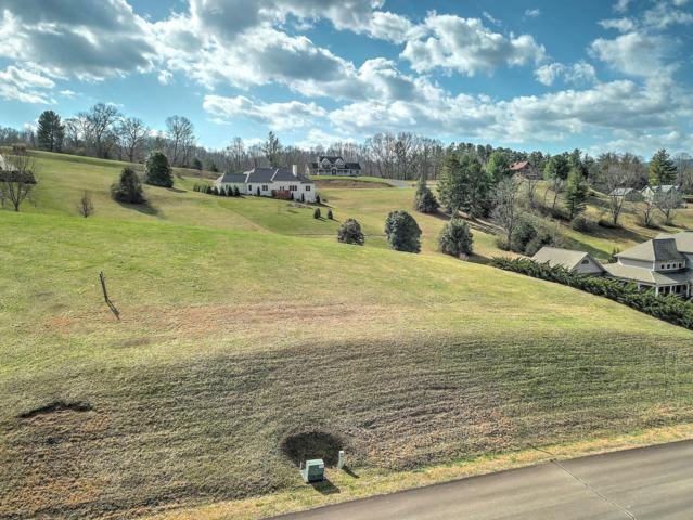 Lot 104 Harbour Point, Butler, TN 37640 (#1031897) :: Billy Houston Group