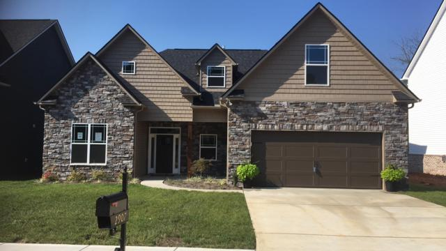 2907 Cardiff Castle Lane, Knoxville, TN 37931 (#1031992) :: Billy Houston Group