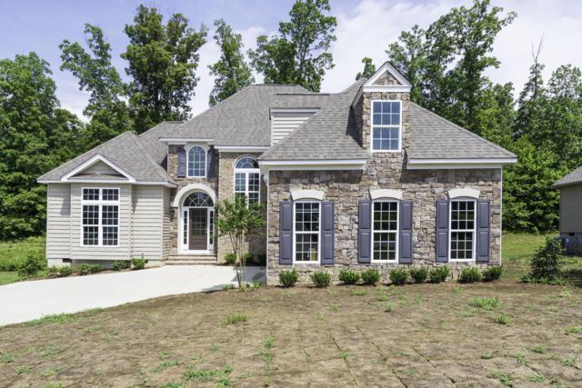 581 Oak Hills Drive, Lenoir City, TN 37771 (#1032250) :: Billy Houston Group