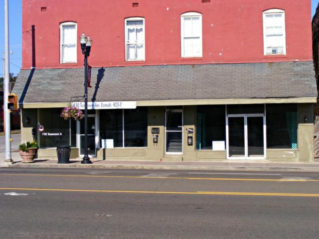 830 Tennessee Ave, Etowah, TN 37331 (#1033800) :: SMOKY's Real Estate LLC