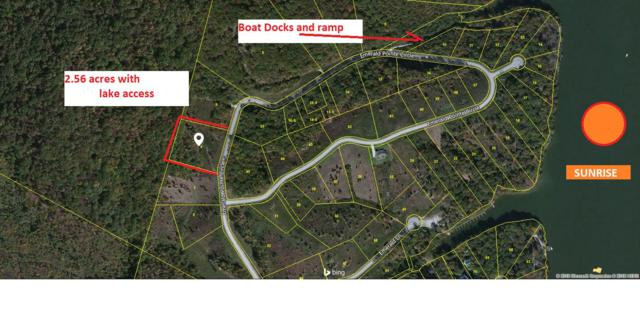Emerald Pointe Circle, Rockwood, TN 37854 (#1034309) :: Billy Houston Group