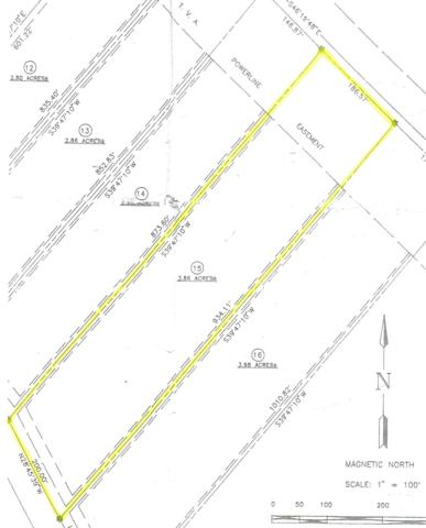 George Branch Drive, Monterey, TN 38574 (#1034460) :: Billy Houston Group