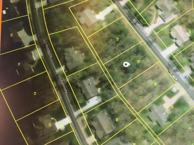 Tahlequah Drive, Loudon, TN 37774 (#1034475) :: CENTURY 21 Legacy