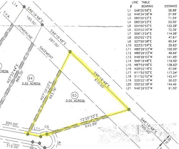 George Branch Drive, Monterey, TN 38574 (#1034483) :: Billy Houston Group