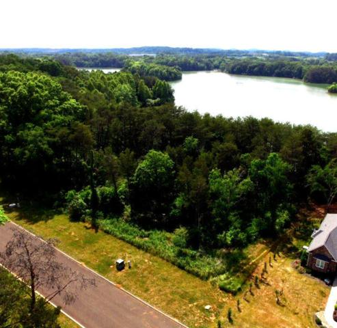 Lot 51 Falcon Trail, Vonore, TN 37885 (#1036259) :: Billy Houston Group