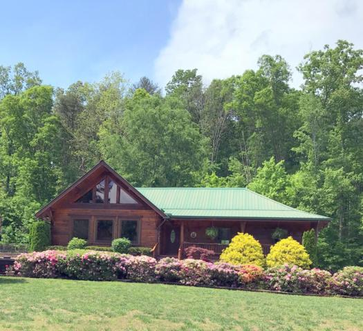 114 Pine Loop Drive, Madisonville, TN 37354 (#1039535) :: Shannon Foster Boline Group
